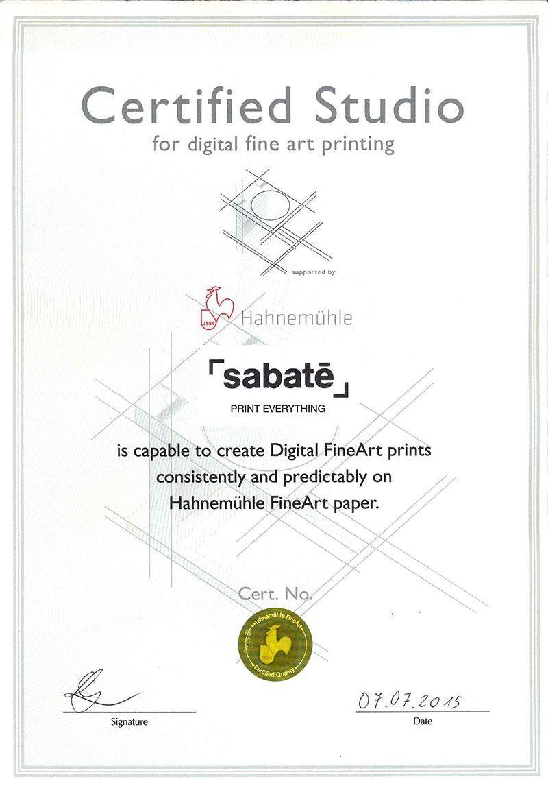 Hahnemühle Reproducciones fotográficas Fine art Impresión digital Giclee