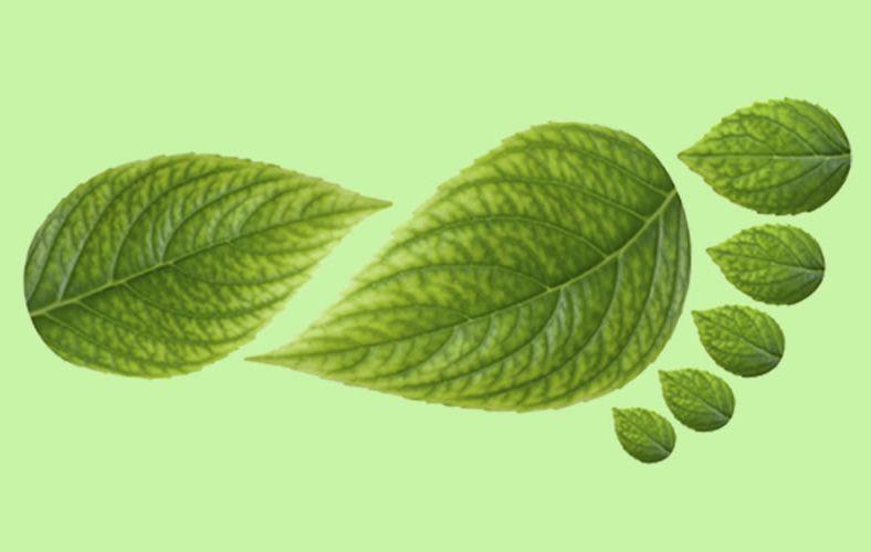 Impresión ecológica Industria gráfica Green Print