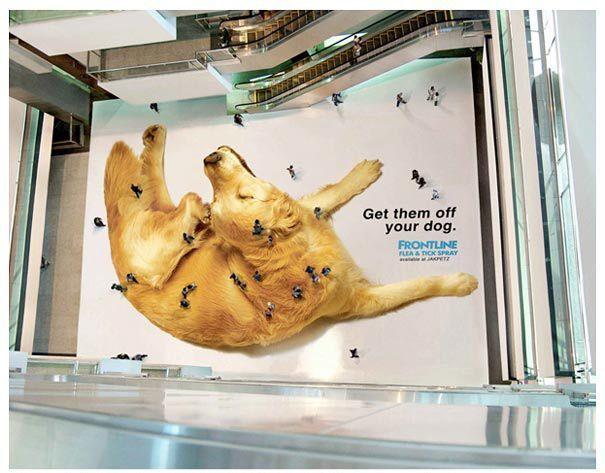 Agencia de publicidad Branding Impresión digital