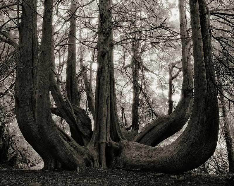 Retoque fotografía documental Imagen