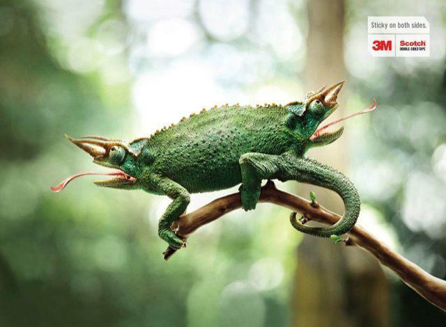 Campaña publicidad Comunicación visual Anuncios impresos