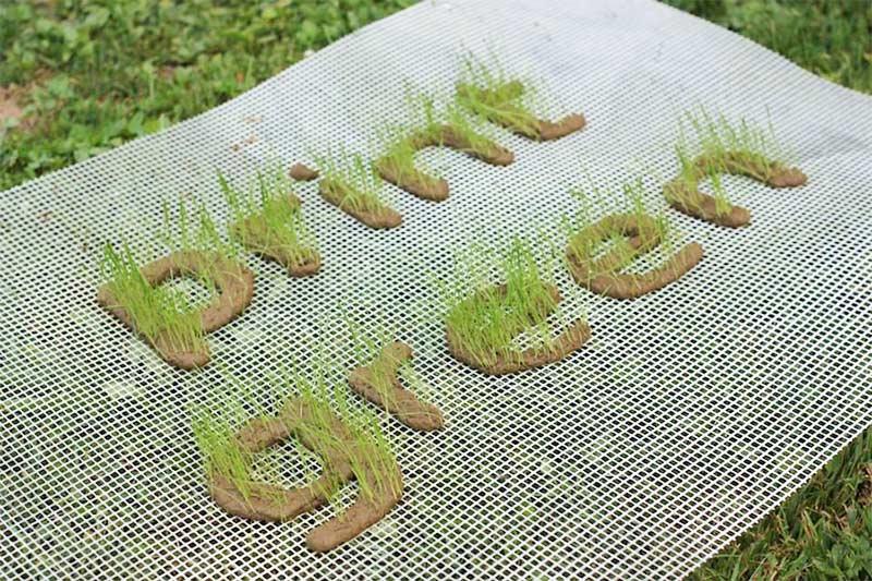 Green Print Impresión digital gran formato