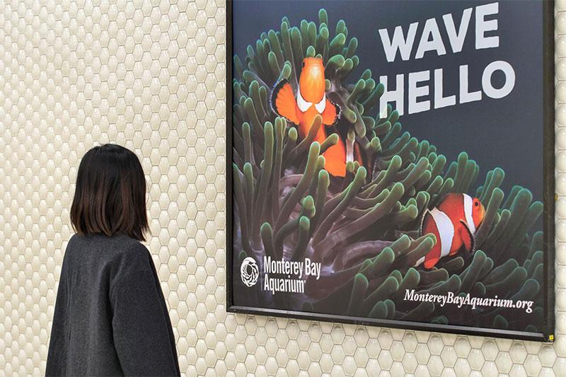 Instalación gráfica Campaña publicitaria