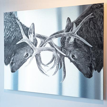Impresión sobre aluminio Interiorismo