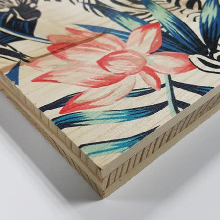 Cuadros de madera impresa